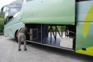 Bus litera_3